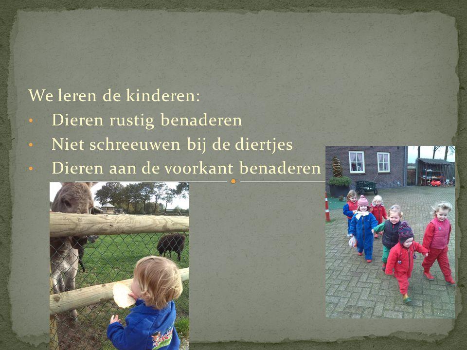 We leren de kinderen: Dieren rustig benaderen. Niet schreeuwen bij de diertjes.
