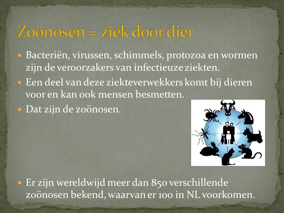 Zoönosen = ziek door dier