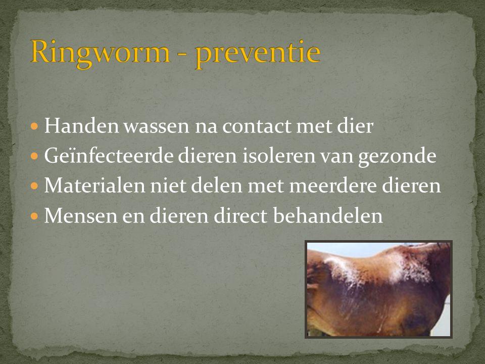 Ringworm - preventie Handen wassen na contact met dier