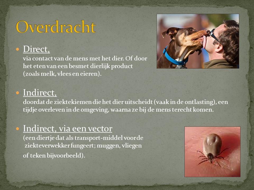 Overdracht Direct, via contact van de mens met het dier. Of door het eten van een besmet dierlijk product (zoals melk, vlees en eieren).