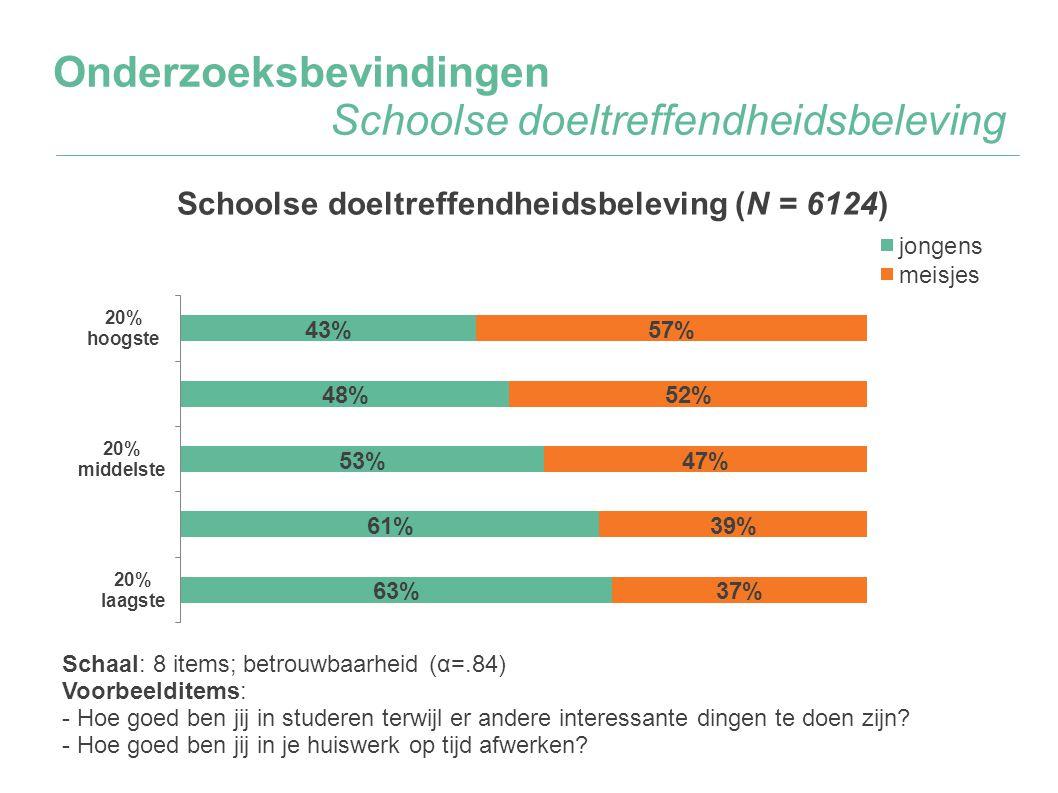 Onderzoeksbevindingen Schoolse doeltreffendheidsbeleving