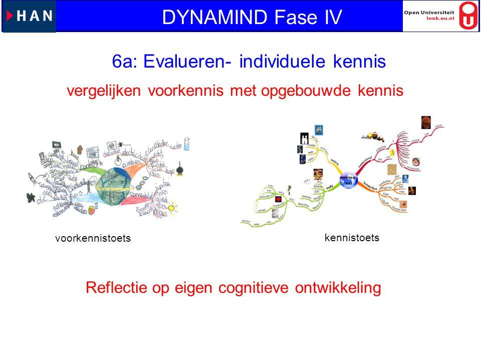 6a: Evalueren- individuele kennis