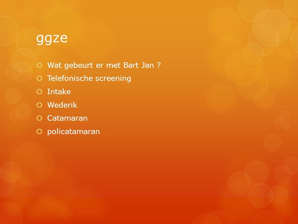 ggze Wat gebeurt er met Bart Jan Telefonische screening Intake