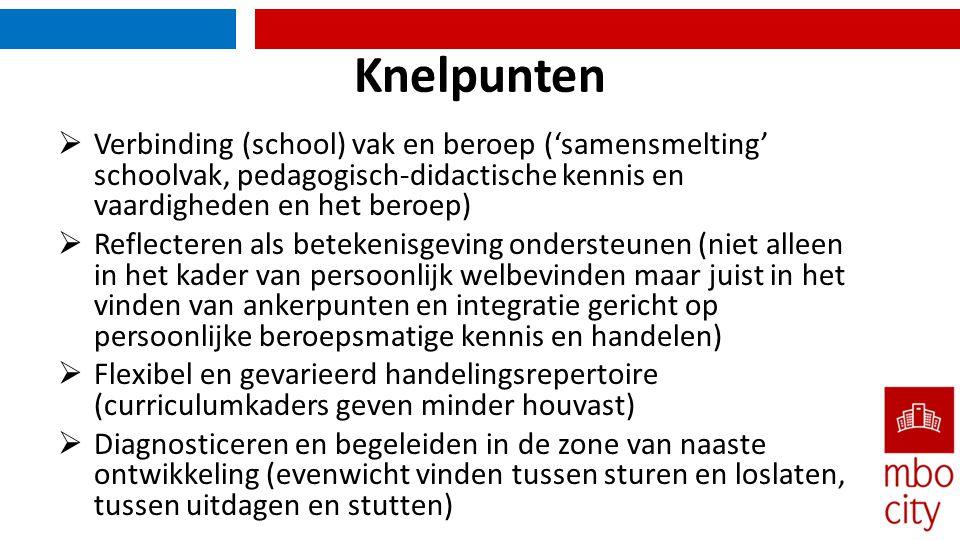 Knelpunten Verbinding (school) vak en beroep ('samensmelting' schoolvak, pedagogisch-didactische kennis en vaardigheden en het beroep)