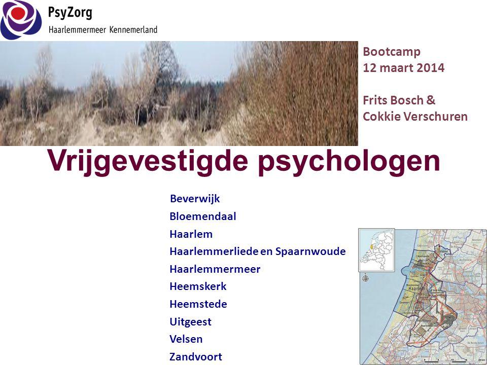 Vrijgevestigde psychologen