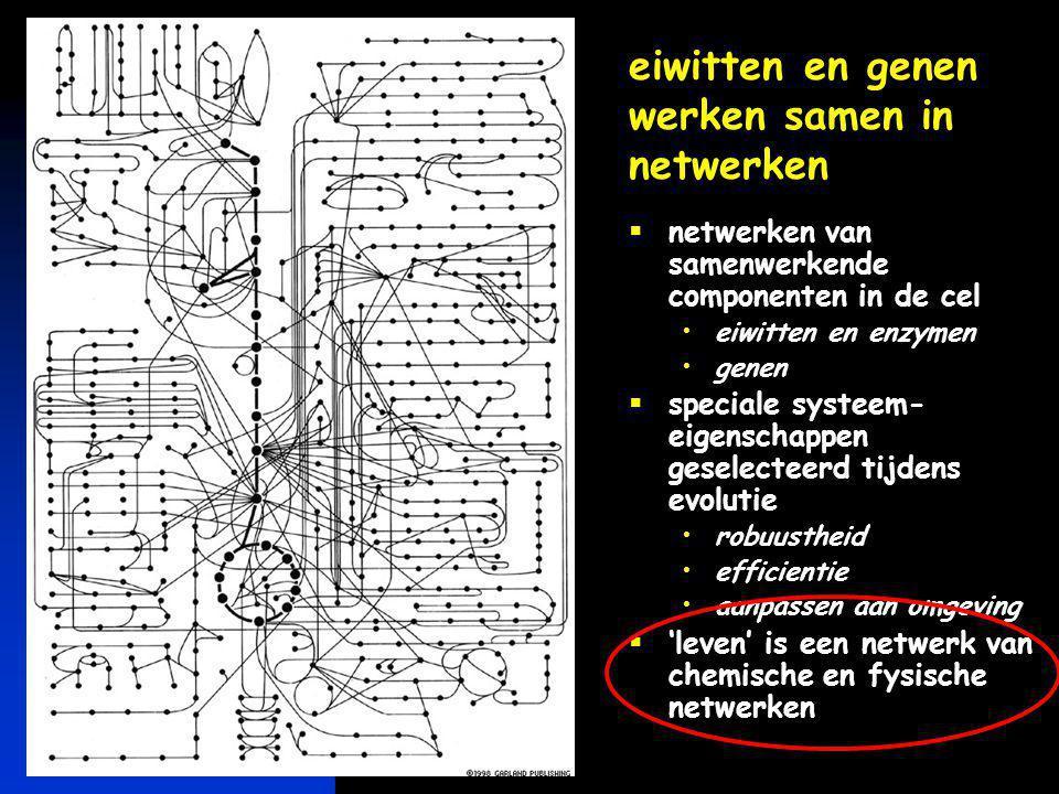 eiwitten en genen werken samen in netwerken