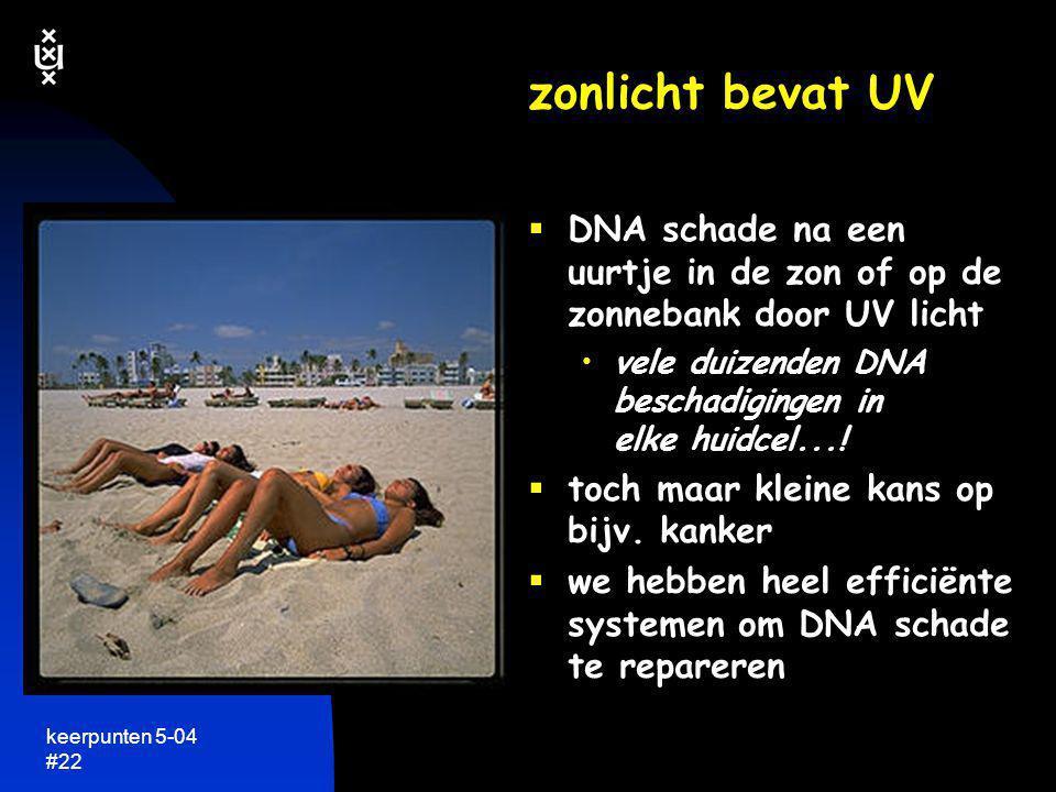 zonlicht bevat UV DNA schade na een uurtje in de zon of op de zonnebank door UV licht. vele duizenden DNA beschadigingen in elke huidcel...!