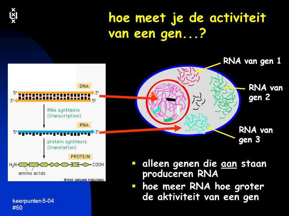 hoe meet je de activiteit van een gen...