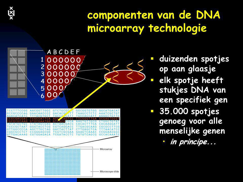 componenten van de DNA microarray technologie