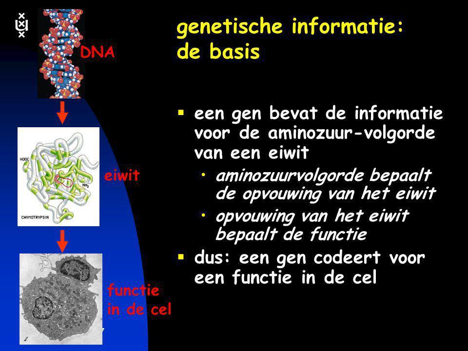 genetische informatie: de basis