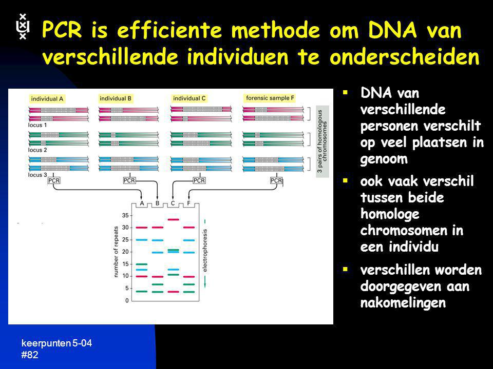 PCR is efficiente methode om DNA van verschillende individuen te onderscheiden