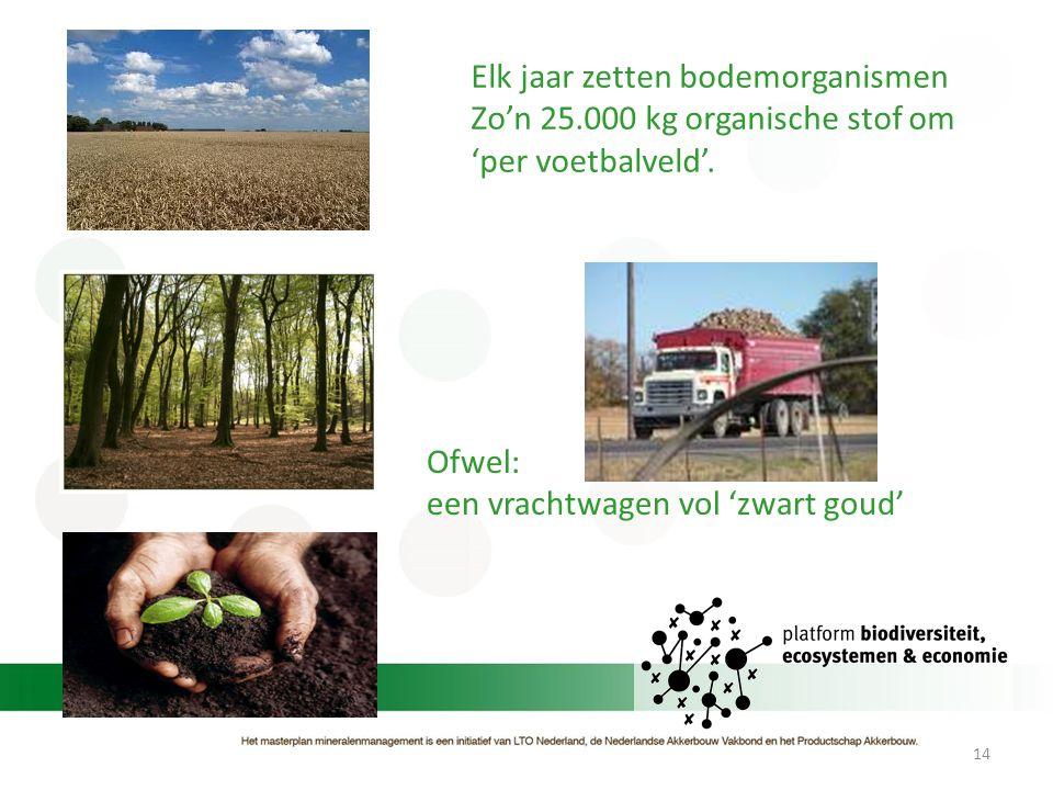 Elk jaar zetten bodemorganismen
