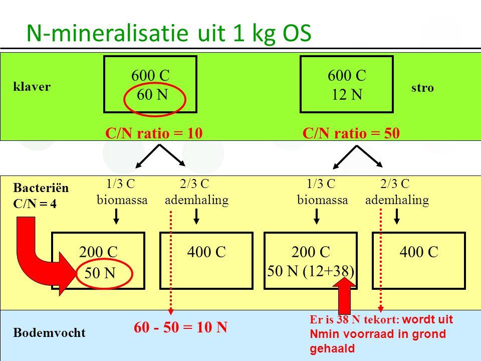 N-mineralisatie uit 1 kg OS