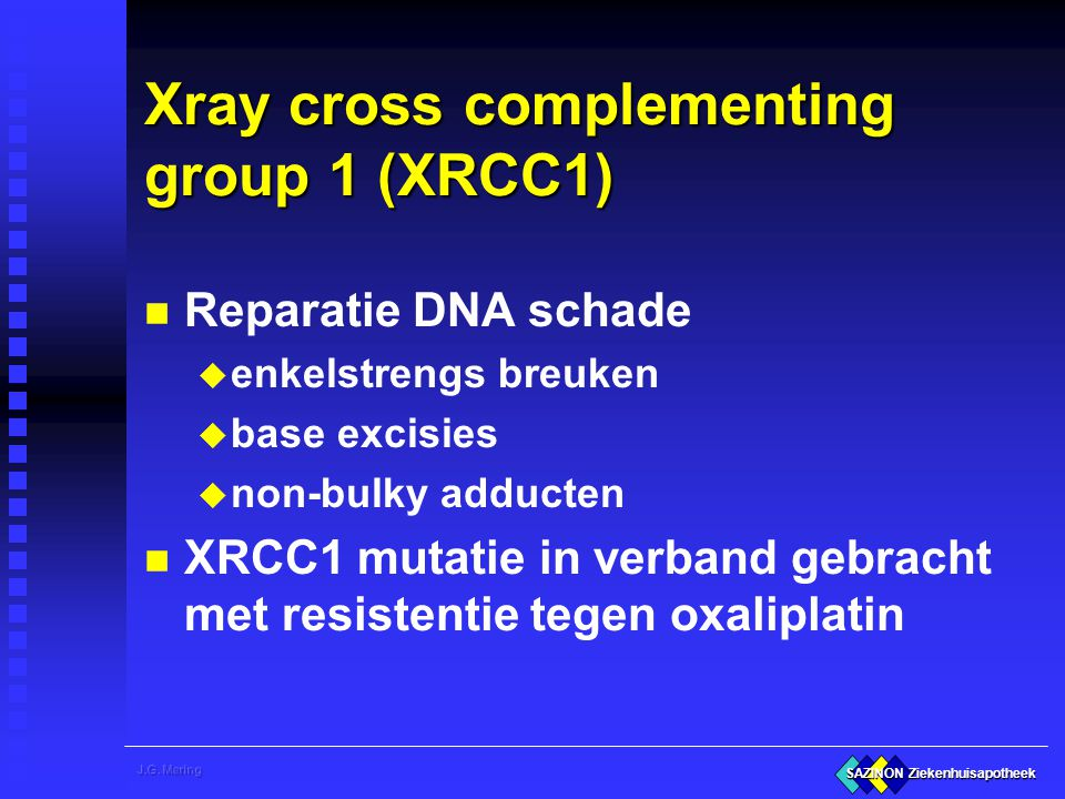 Xray cross complementing group 1 (XRCC1)
