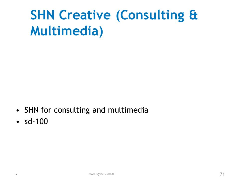 SHN Creative (Consulting & Multimedia)