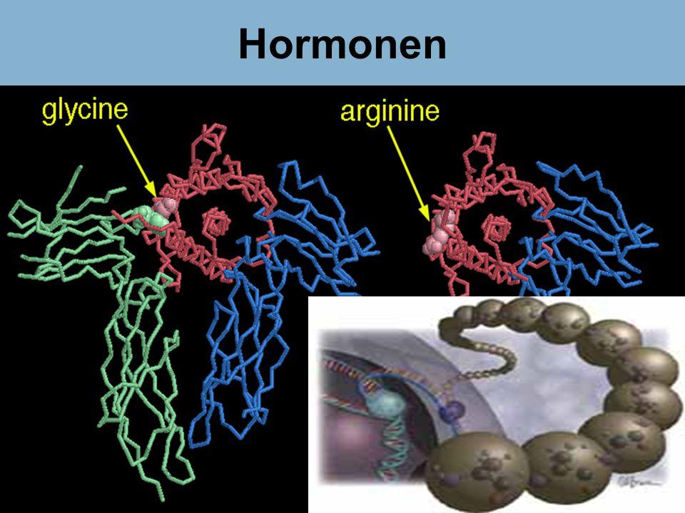 Hormonen Dr Peet H Botha