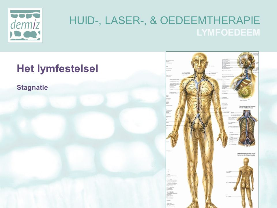 HUID-, LASER-, & OEDEEMTHERAPIE LYMFOEDEEM