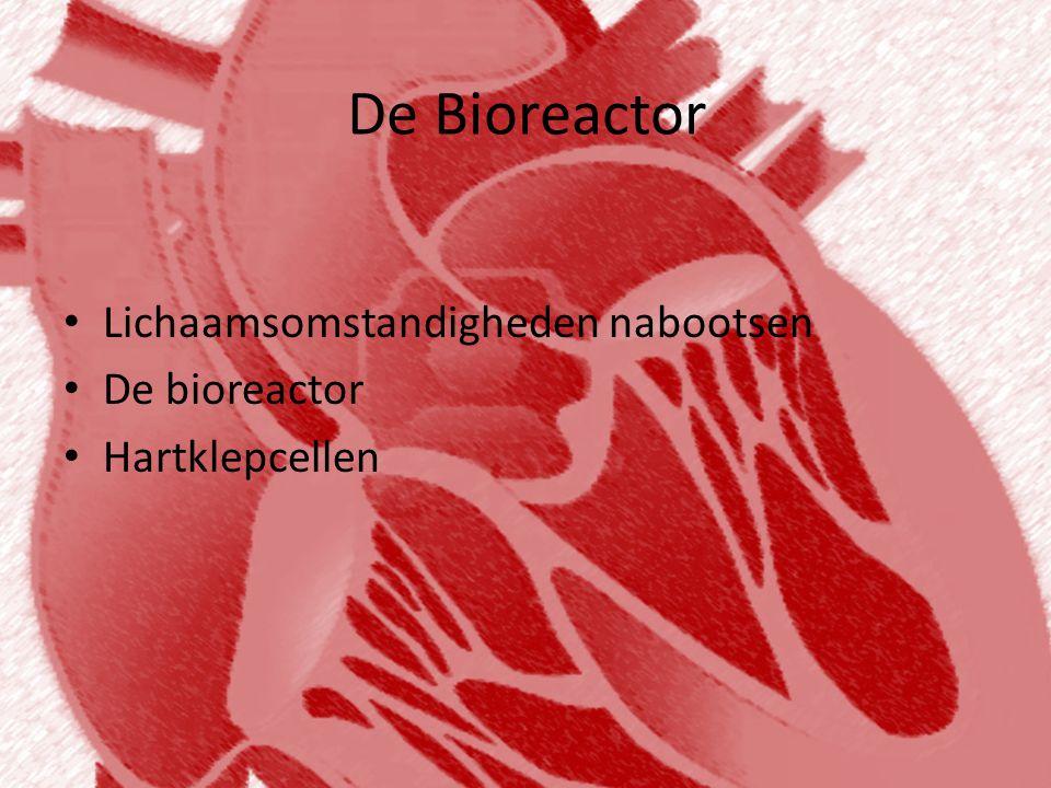 De Bioreactor Lichaamsomstandigheden nabootsen De bioreactor