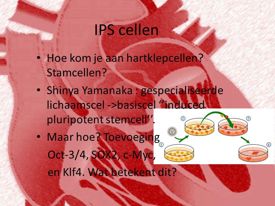 IPS cellen Hoe kom je aan hartklepcellen Stamcellen