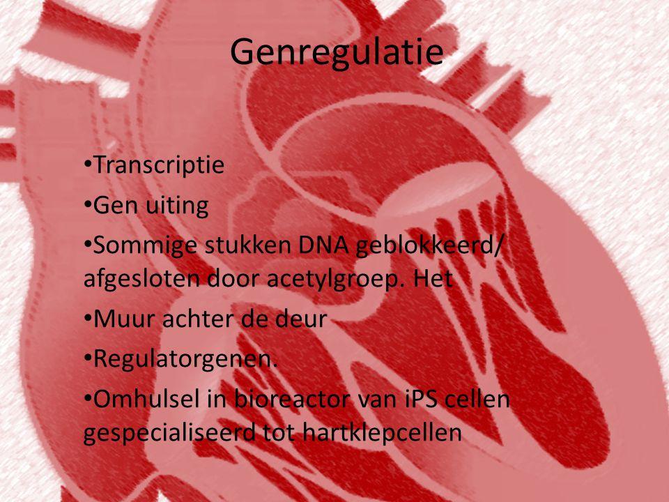 Genregulatie Transcriptie Gen uiting