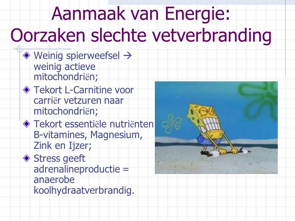 Aanmaak van Energie: Oorzaken slechte vetverbranding
