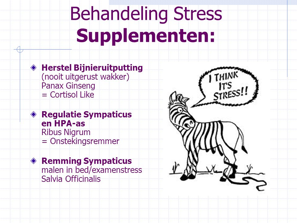 Behandeling Stress Supplementen: