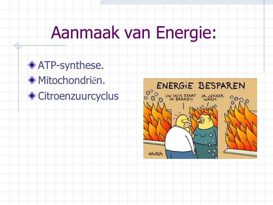 Aanmaak van Energie: ATP-synthese. Mitochondriën. Citroenzuurcyclus