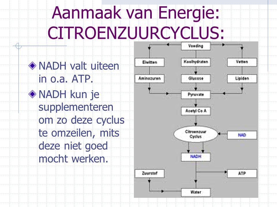 Aanmaak van Energie: CITROENZUURCYCLUS: