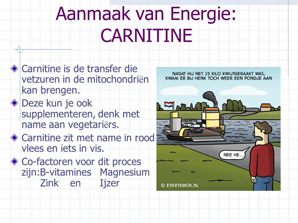 Aanmaak van Energie: CARNITINE