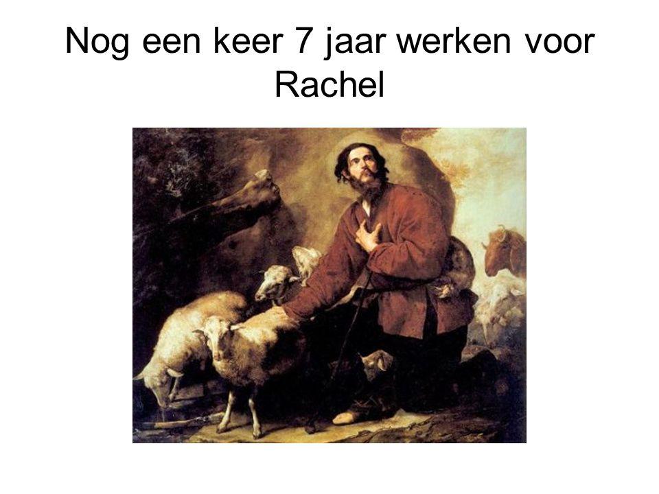 Nog een keer 7 jaar werken voor Rachel