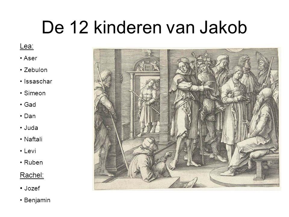 De 12 kinderen van Jakob Lea: Rachel: Jozef Aser Zebulon Issaschar