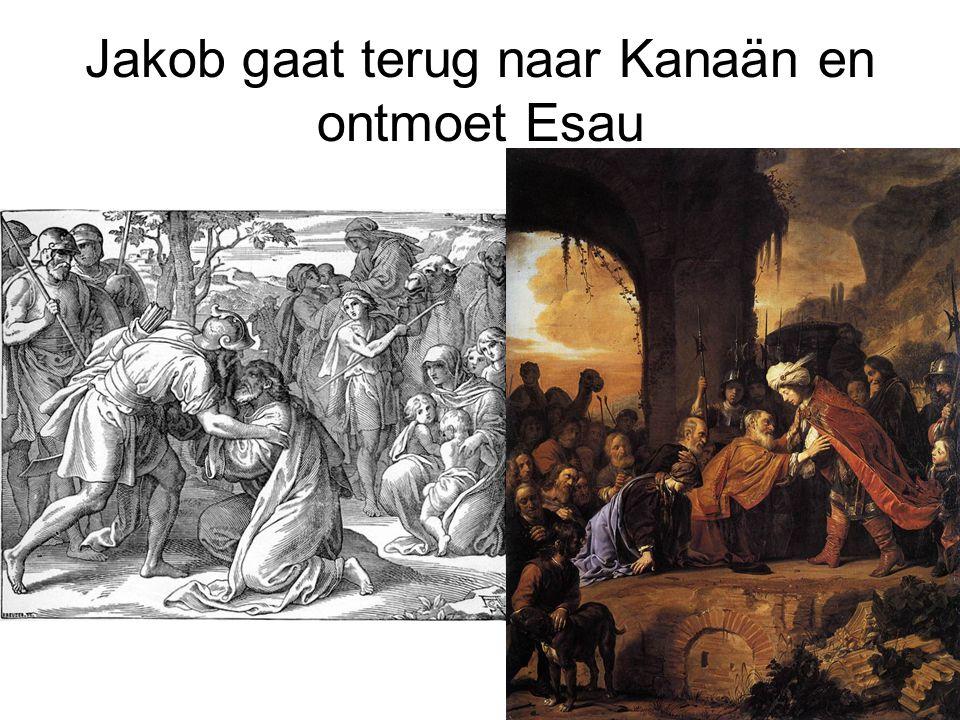 Jakob gaat terug naar Kanaän en ontmoet Esau