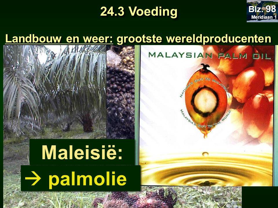 Maleisië:  palmolie 24.3 Voeding