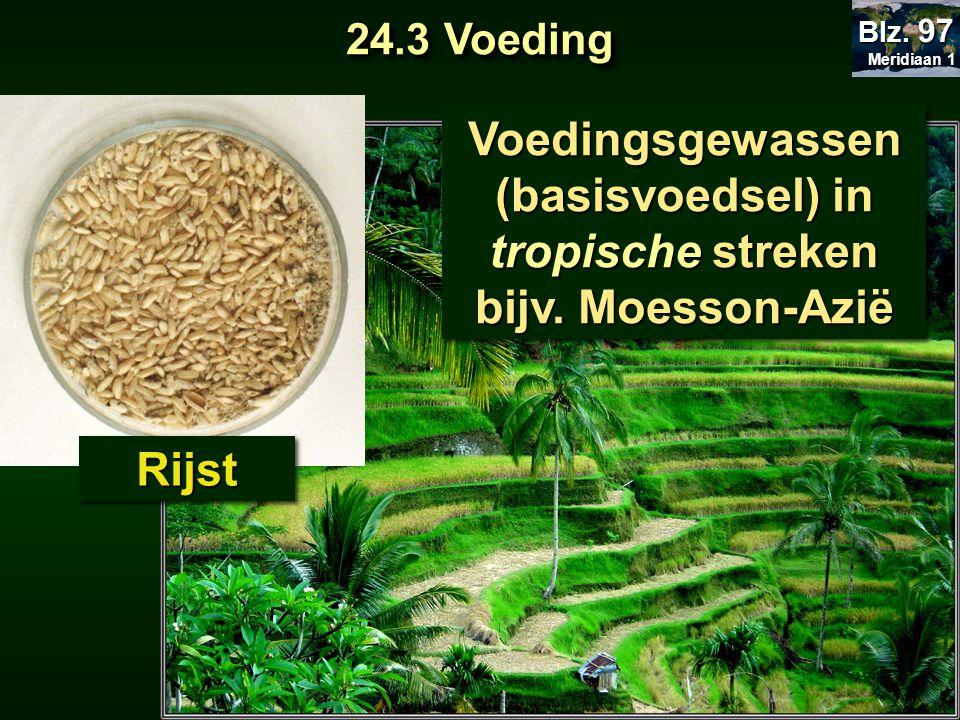 Voedingsgewassen (basisvoedsel) in tropische streken