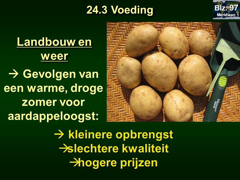  Gevolgen van een warme, droge zomer voor aardappeloogst: