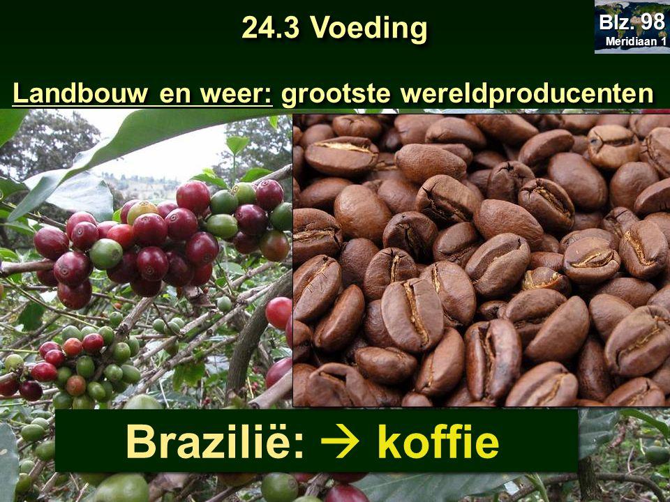 Brazilië:  koffie 24.3 Voeding