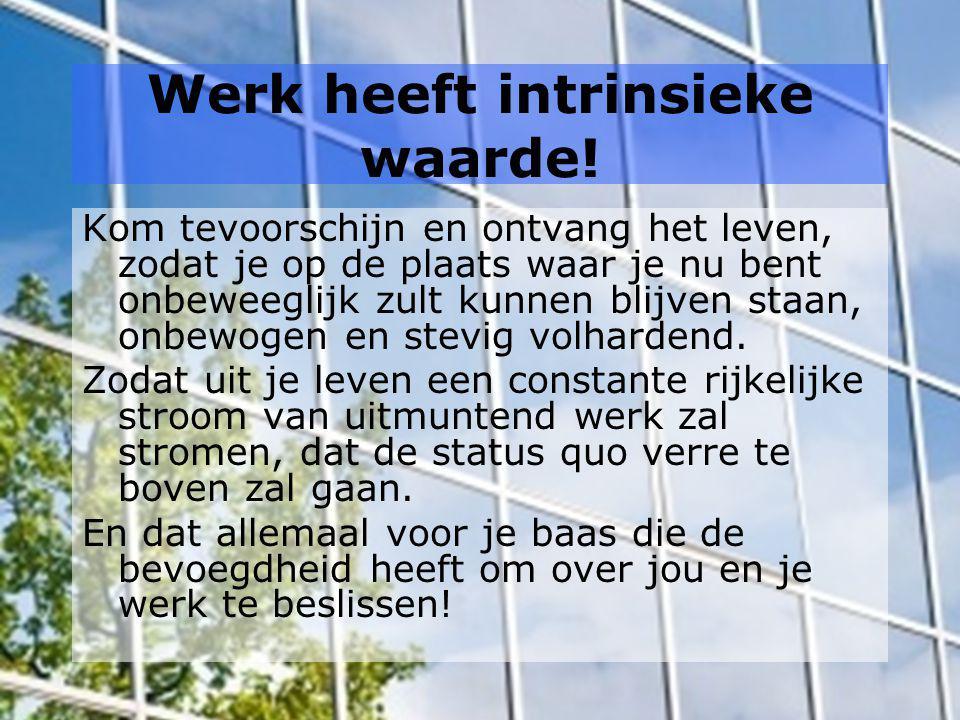 Werk heeft intrinsieke waarde!