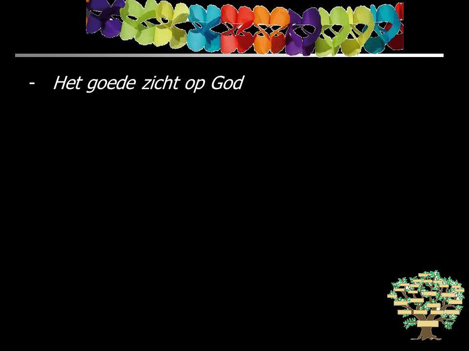 Het goede zicht op God