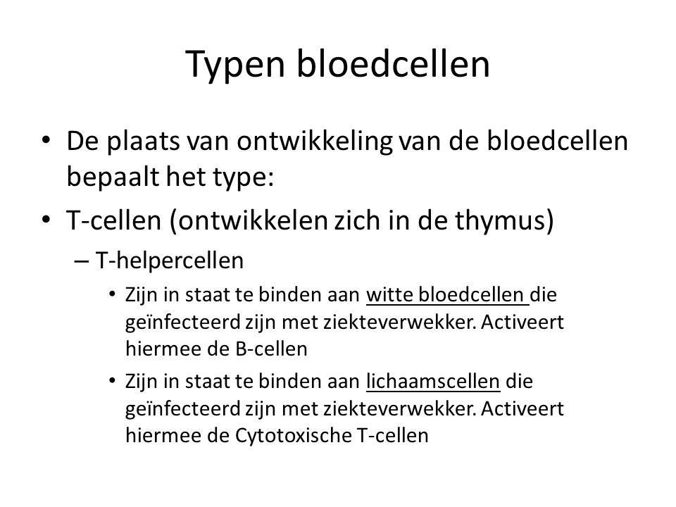 Typen bloedcellen De plaats van ontwikkeling van de bloedcellen bepaalt het type: T-cellen (ontwikkelen zich in de thymus)
