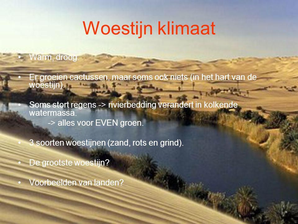 Woestijn klimaat Warm, droog.