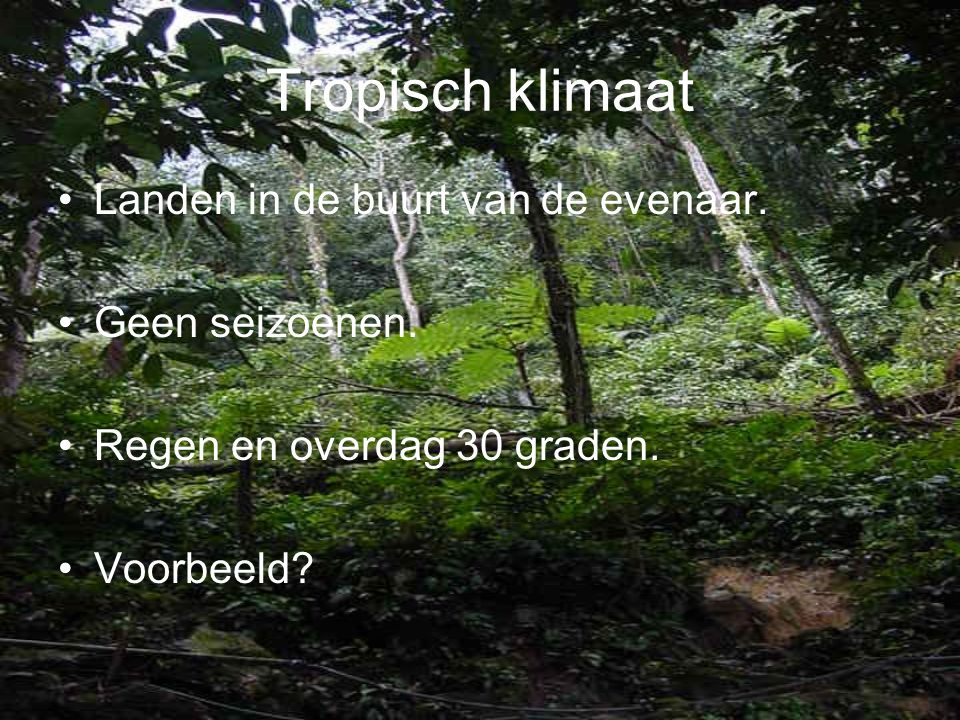 Tropisch klimaat Landen in de buurt van de evenaar. Geen seizoenen.
