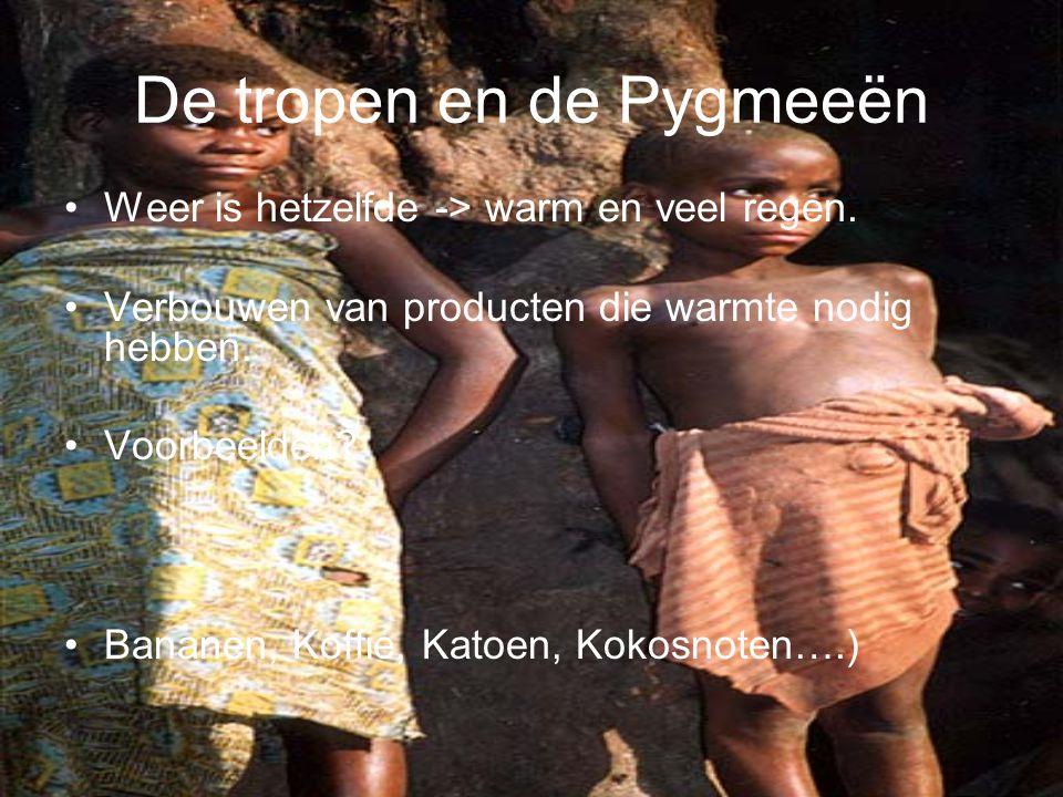 De tropen en de Pygmeeën