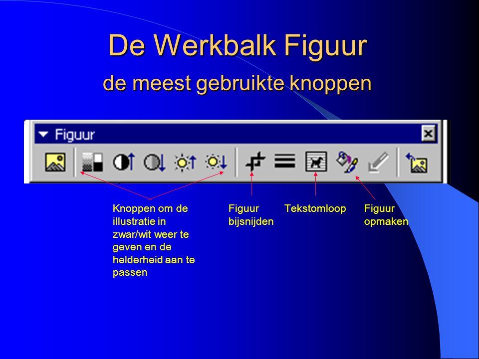 De Werkbalk Figuur de meest gebruikte knoppen