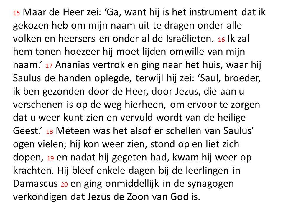15 Maar de Heer zei: 'Ga, want hij is het instrument dat ik gekozen heb om mijn naam uit te dragen onder alle volken en heersers en onder al de Israëlieten.