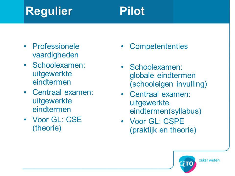 Regulier Pilot Professionele vaardigheden
