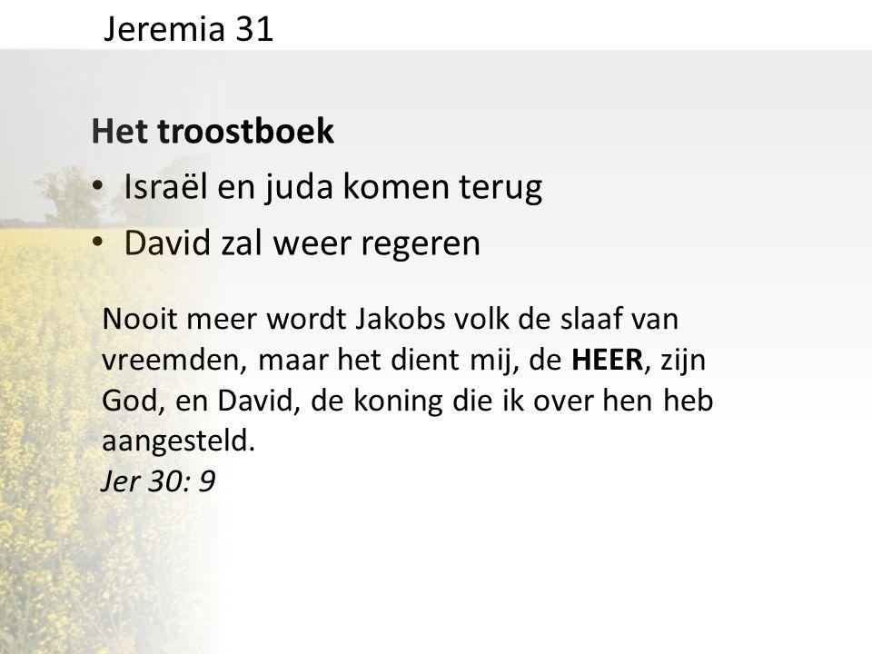 Israël en juda komen terug David zal weer regeren
