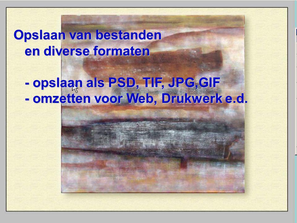 Opslaan van bestanden en diverse formaten - opslaan als PSD, TIF, JPG,GIF - omzetten voor Web, Drukwerk e.d.