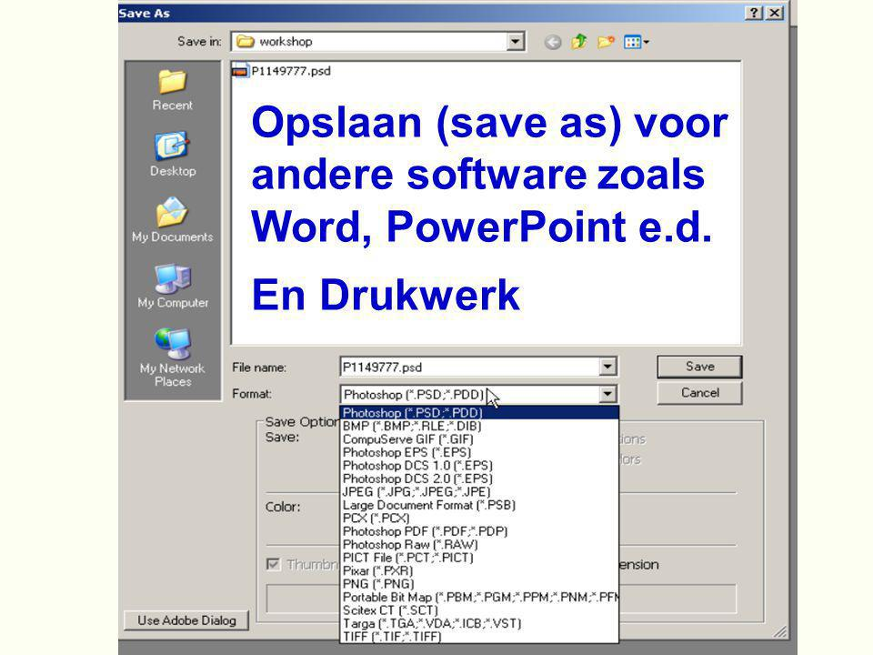 Opslaan (save as) voor andere software zoals Word, PowerPoint e.d.