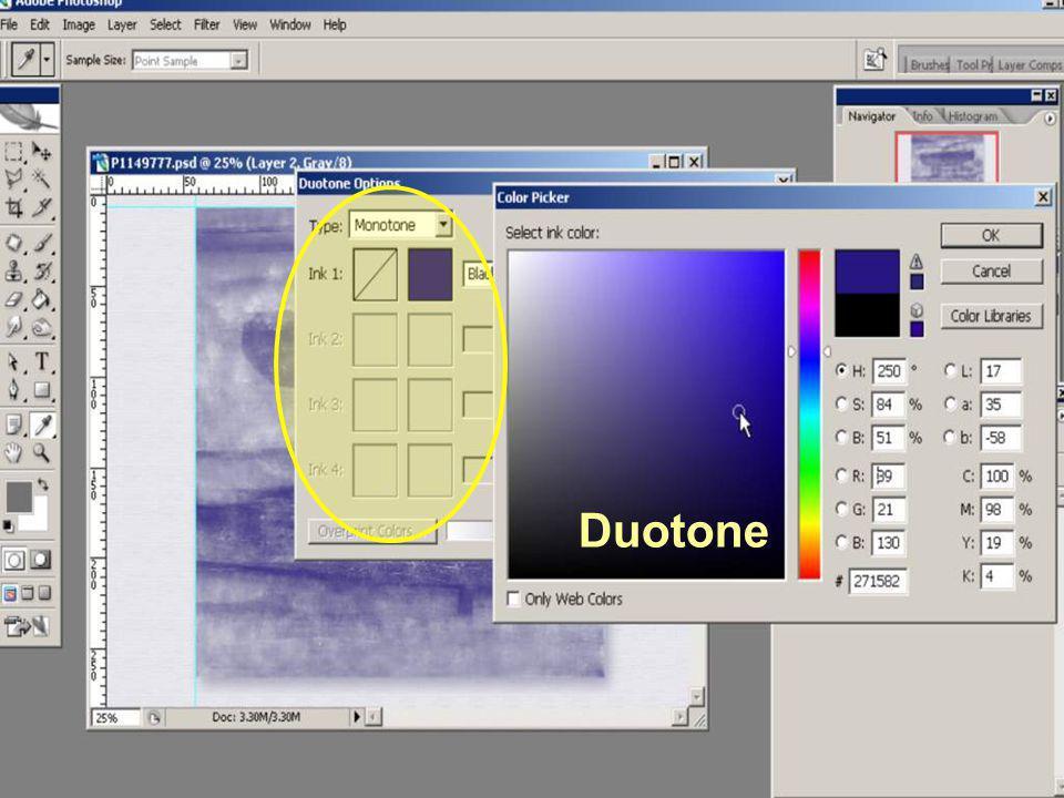 Duotone Duotone Dit kan nl. alleen met Grayscale foto's!