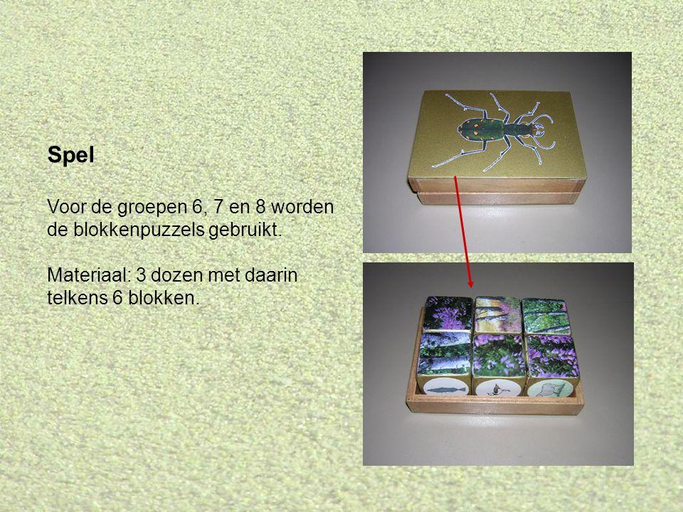 Spel Voor de groepen 6, 7 en 8 worden de blokkenpuzzels gebruikt.